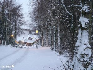 winterstimmung_gut_hahn_001