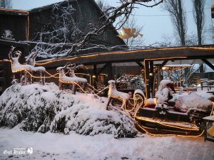 winterstimmung_gut_hahn_006